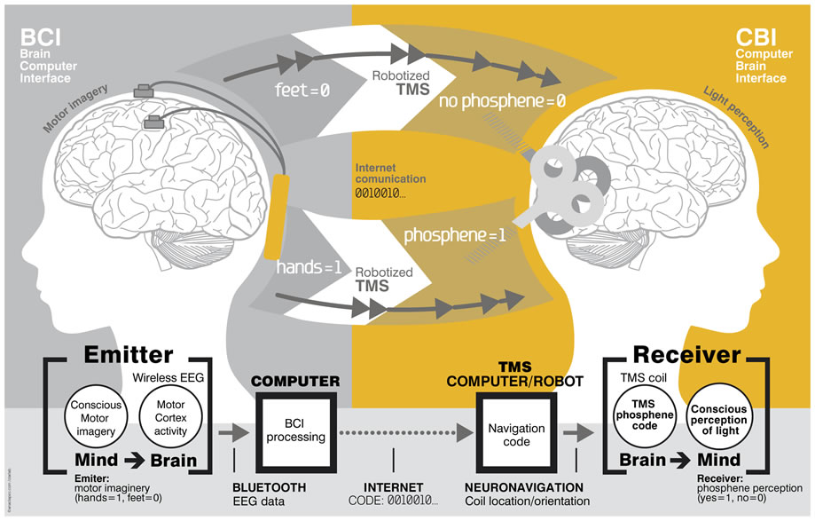 Esquema de la comunicación cerebro a cerebro.