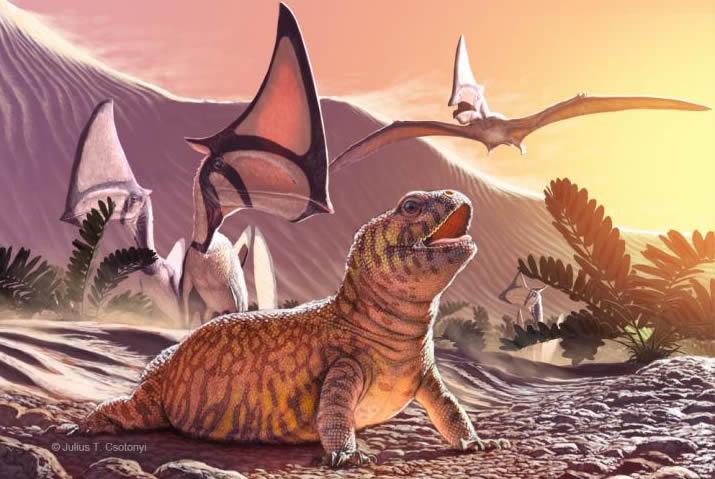 """Se encuentra """"eslabón perdido"""" en la evolución de los lagartos"""