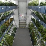 Así será un compartimento de cultivos de futuras naves espaciales, según NASA. Créditos:EPA