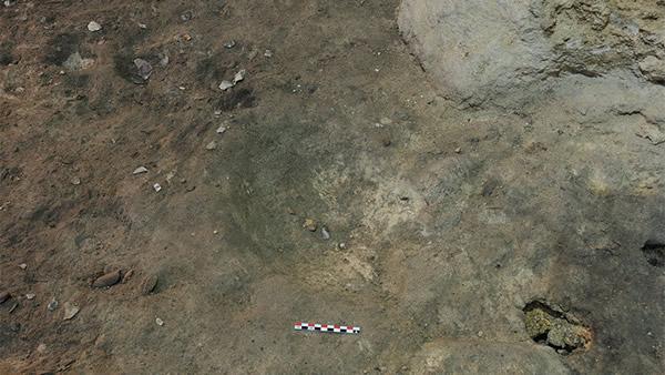 Herramientas de piedra líticos recuperados hechos de pedernal, piedra caliza y cuarzo, así como huesos de caballos, ciervos rojos, uros y cabras salvajes. Que confirma lo que los neandertales Cazaban y comian. Créditos: Palmira Saladié / IPHES.