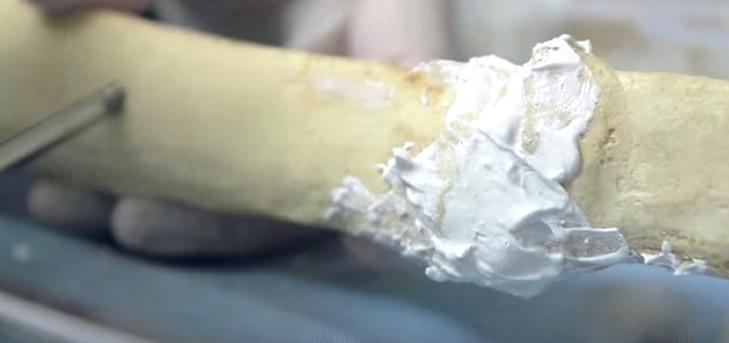 Investigadora colombiana crea material que regenera huesos fracturados