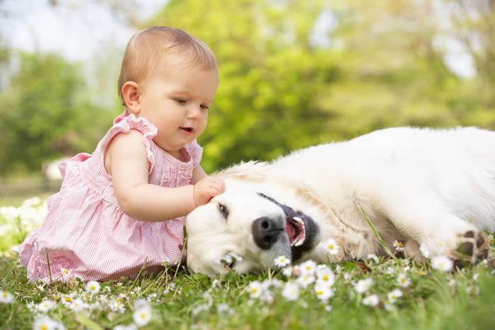 Las mascotas pueden enseñar a los más pequeños a hacer más responsables.