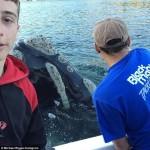 Michael Riggio, (izquierda) e Ivan Iskenderian ayudan a la ballena. Crédito: dailymail.co.uk