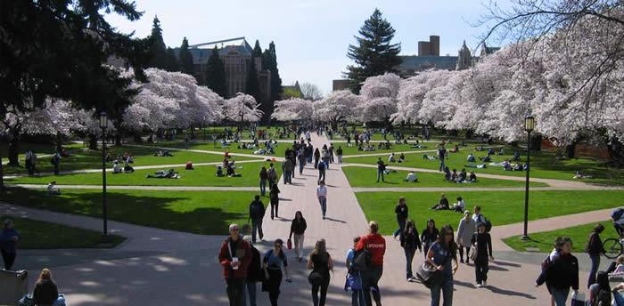 Las universidades mas bonitas del mundo