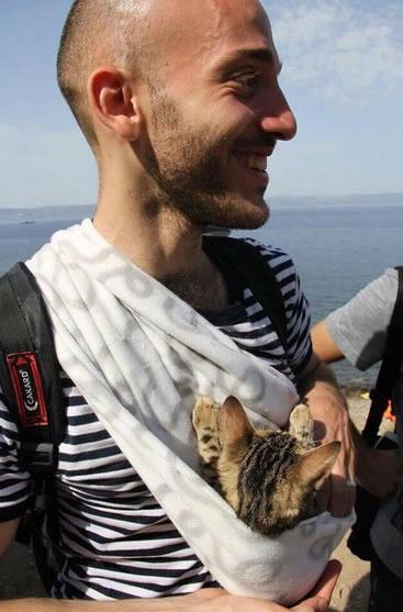 Gatito de refugiado sirio