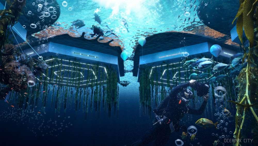 Los creadores dicen que los arrecifes flotantes que se encuentran debajo de las plataformas albergarán algas, ostras, mejillones, vieiras y almejas que «limpiarán el agua y acelerarán la regeneración del ecosistema»