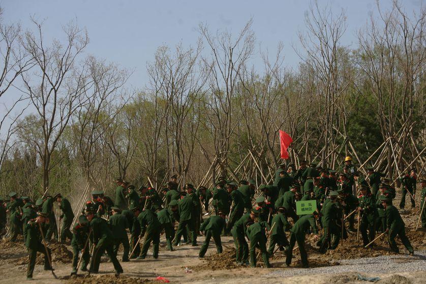 Soldados chinos han sido destinados a plantar árboles