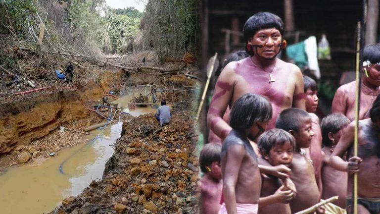Etnia indígena busca expulsar de sus tierras a mineros ilegales de oro
