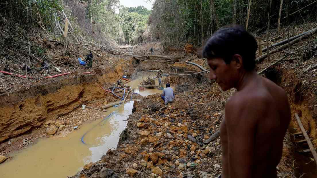 Mineria ilegal en Brasil